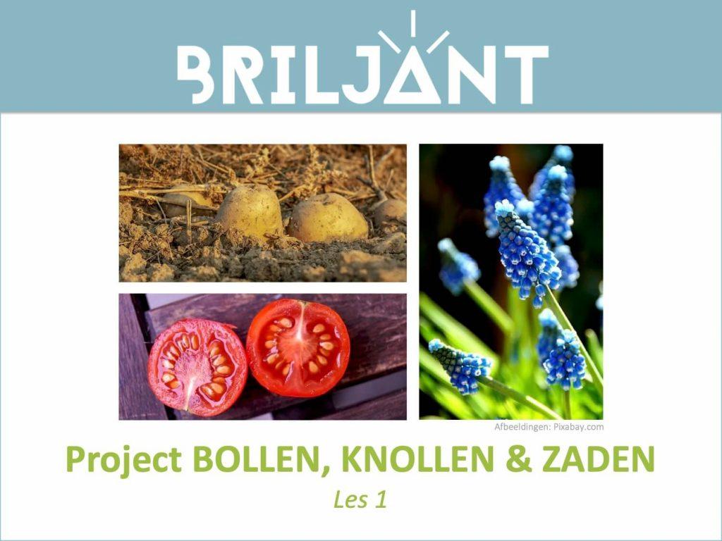 Thumbnail Project BOLLEN KNOLLEN en ZADEN Briljant Onderwijs