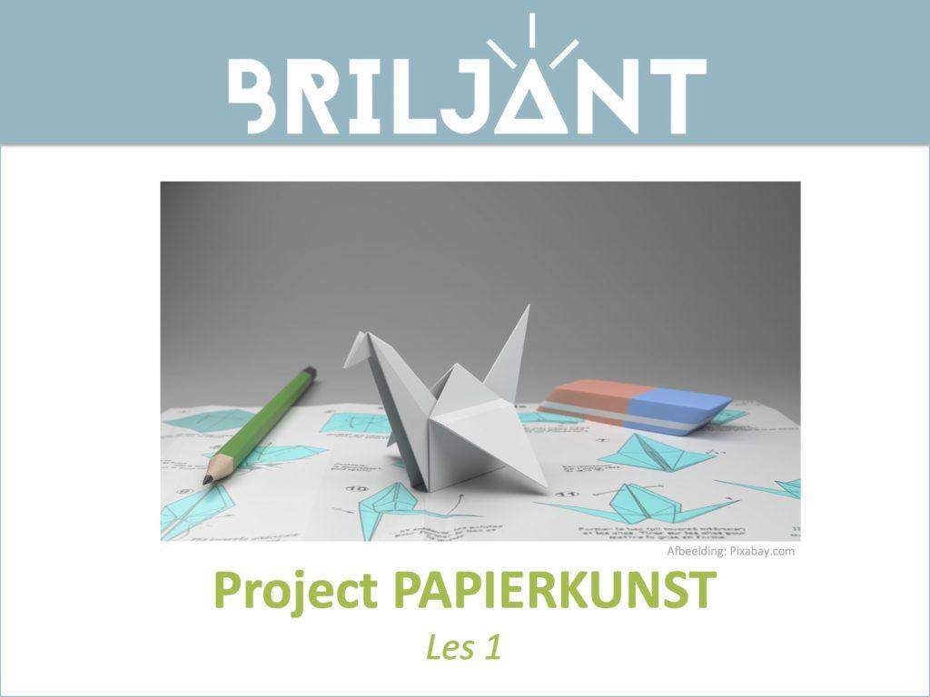 Thumbnail Project PAPIERKUNST Briljant Onderwijs