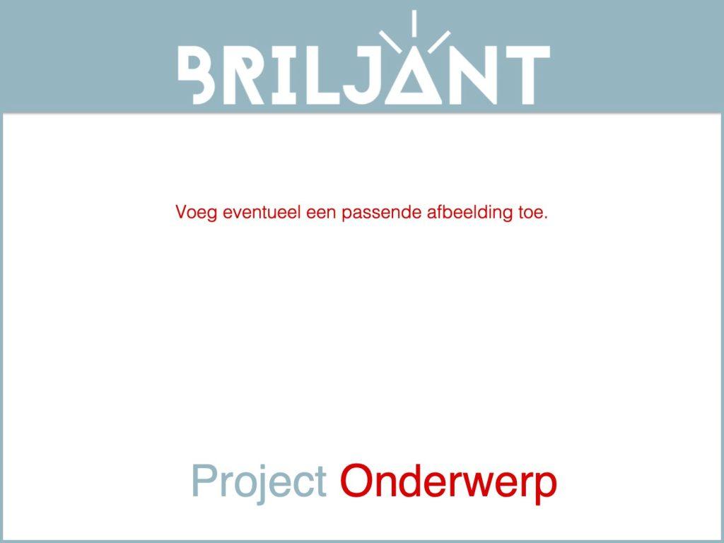 Thumbnail Briljant-project LEEG FORMAT